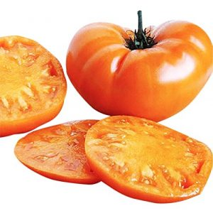 Marde Ross & Company Organic Seed 1 Organic Kellogg Orange Breakfast Heirloom Tomato Seeds - Large Tomato - One of The Most Delicious Tomatoes for Home Growing, Non GMO - Neonicotinoid-Free.