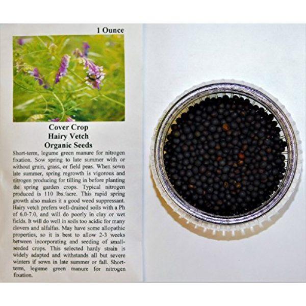 David's Garden Seeds Heirloom Seed 2 David's Garden Seeds Cover Crop Hairy Vetch 9876 (Purple) Non-GMO, Heirloom Seeds One Ounce Package