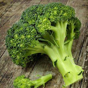 David's Garden Seeds Heirloom Seed 1 David's Garden Seeds Broccoli Waltham 29 SL0338 (Green) 100 Non-GMO, Heirloom Seeds