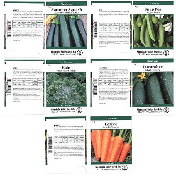 Mountain Valley Seed Company Heirloom Seed 4 Heirloom Vegetable Garden Seed Collection Assortment of 15 Non-GMO, Easy Grow, Gardening Seeds: Carrot, Onion, Tomato, Pea, Cucumber, Beets, Basil, More