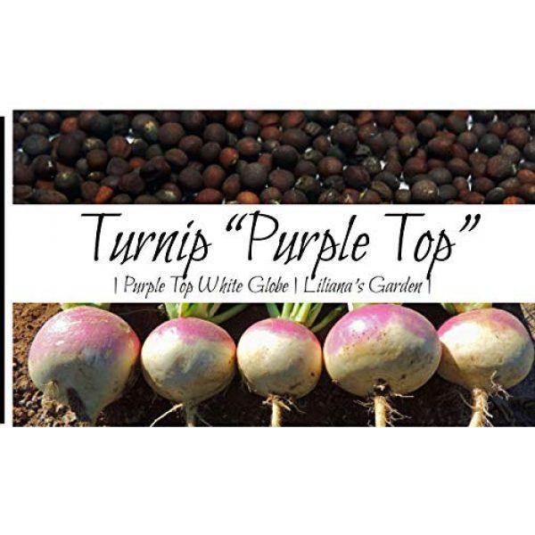 Liliana's Garden Heirloom Seed 1 Liliana's Garden Turnip Seeds - Purple Top, White Globe - Heirloom