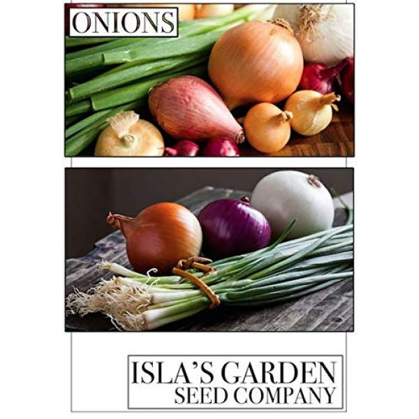 Isla's Garden Seeds Heirloom Seed 4 Evergreen Bunching Nebuka Onion Seeds, 500+ Premium Heirloom Seeds, Fun Addition to Garden! ON Sale!, (Isla's Garden Seeds), Non GMO, 85% Germination Rates, Highest Quality Seeds