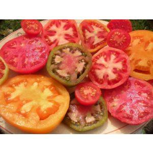 Ohio Heirloom Seeds  1 Heirloom Tomato Seed Assortment- 10 Varieties- Over 900 Seeds- Non GMO Heirloom Varieties
