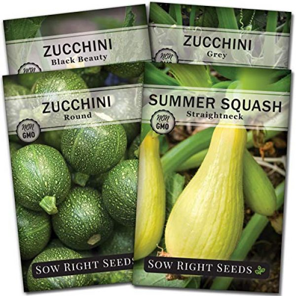 Sow Right Seeds Heirloom Seed 1 Sow Right Seeds - Zucchini Squash Seed Collection for Planting - Black Beauty, Grey, Round Zucchinis and Yellow Straightneck Summer Squash, Non-GMO Heirloom Seeds to Plant a Home Vegetable Garden