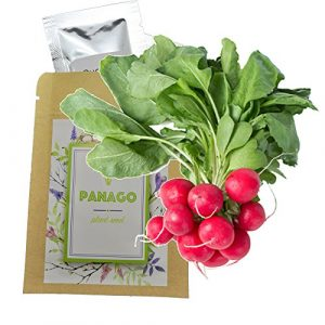 Panago Seeds Organic Seed 1 240+ Radish (Cherry Belle) Seeds for Garden Planting, Non-GMO Organic Heirloom Radish Seeds