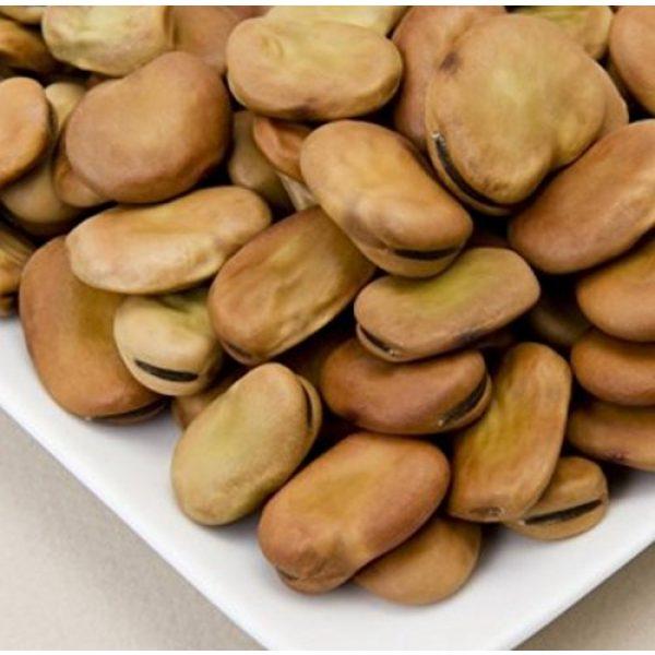 Isla's Garden Seeds Organic Seed 4 Fava Broad Windsor Seeds, 20 Premium Heirloom Seeds, Top selling popular choice, ON SALE!, (Isla's Garden Seeds), Non Gmo Organic Survival Seeds, Highest Quality!