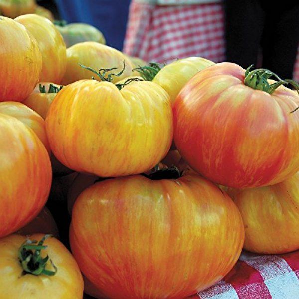Seedz Organic Seed 2 Organic Tomato Seeds, APPR. 30, Copia Gold Beefsteak Tomato, Heirloom Vegetable Seeds, Certified Organic, Non GMO, Non Hybrid, USA