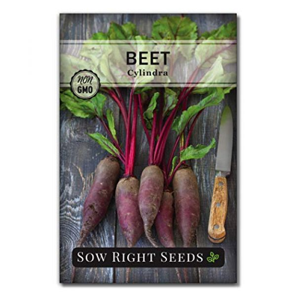 Sow Right Seeds Heirloom Seed 1 Sow Right Seeds - Cylindra Beet Seed for Planting - Non-GMO Heirloom Packet with Instructions to Plant a Home Vegetable Garden - Great Gardening Gift (1)