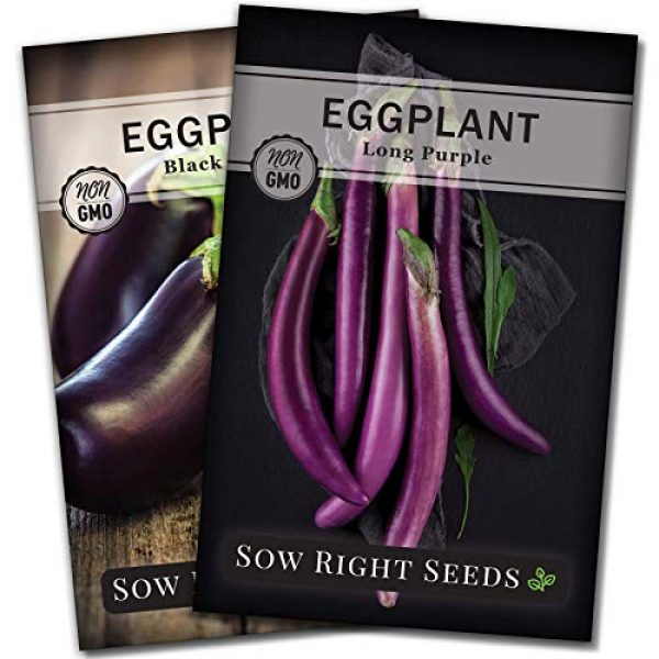 Sow Right Seeds Heirloom Seed 1 Sow Right Seeds - Eggplant Seed Collection for Planting - Black Beauty and Long Eggplant Varieties Non-GMO Heirloom Seeds to Plant an Outdoor Home Vegetable Garden - Great Gardening Gift
