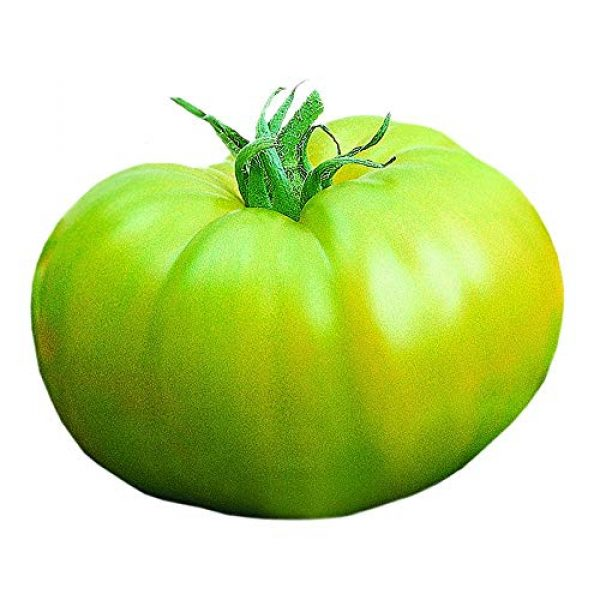 Park Seed Heirloom Seed 1 Park Seed Heirloom Green Hybrid Tomato Seeds, 25 Seeds in a Pack