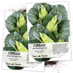 Seed Needs Heirloom Seed 1 Seed Needs, Early Jersey Wakefield Cabbage (Brassica oleracea) Twin Pack of 300 Seeds Each Non-GMO