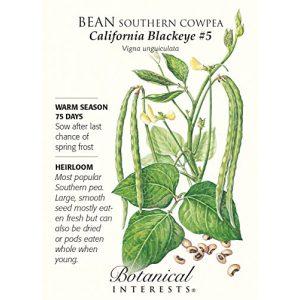 "Botanical Interests  1 Bean ""California Blackeye"" Southern Cowpea Heirloom Seeds"