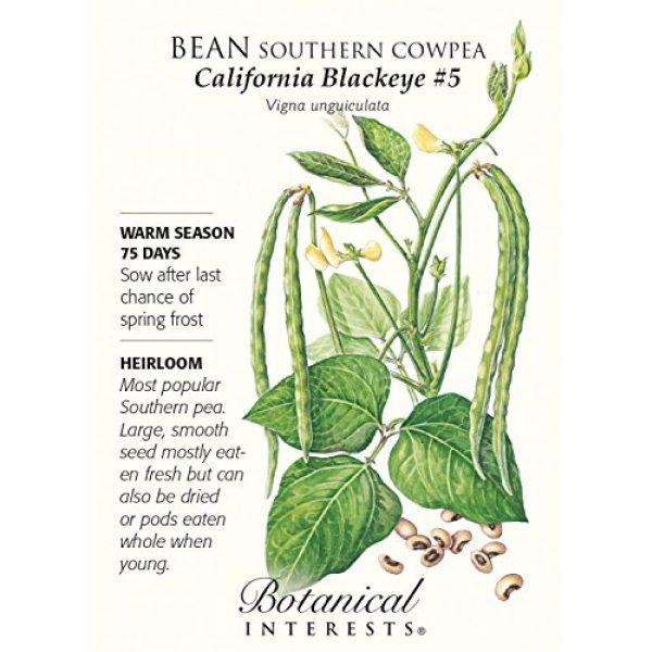 "Botanical Interests Heirloom Seed 1 Bean ""California Blackeye"" Southern Cowpea Heirloom Seeds"