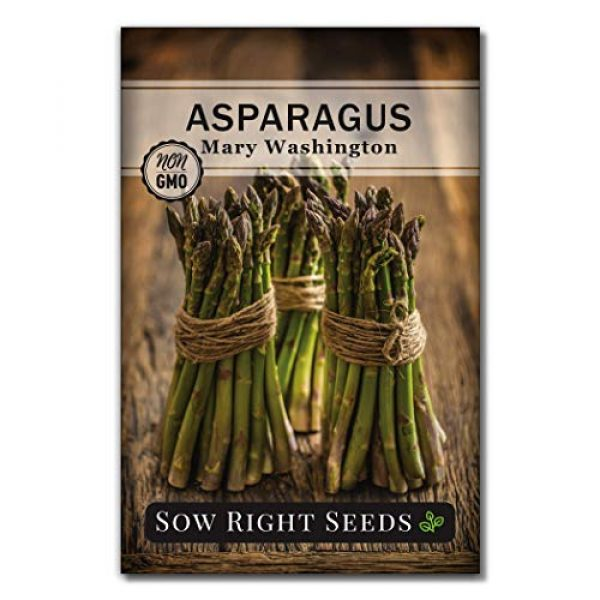 Sow Right Seeds Heirloom Seed 1 Sow Right Seeds - Mary Washington Asparagus Seed for Planting - Non-GMO Heirloom Packet with Instructions to Plant an Outdoor Home Vegetable Garden - Great Gardening Gift (1)