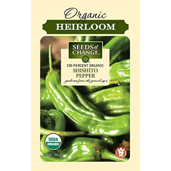 SEEDS OF CHANGE Organic Seed 1 Seeds Of Change 8217 Certified Shishito Pepper, Organic, Seeds, Green