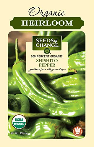 SEEDS OF CHANGE  1 Seeds Of Change 8217 Certified Shishito Pepper