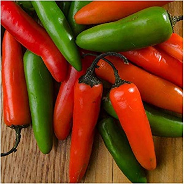 Isla's Garden Seeds Organic Seed 3 Serrano Hot Pepper Seeds, 100+ Premium Heirloom Seeds, 90% Germination Rates, Produces fiery hot pepper plants! - Capsicum annuum - (Isla's Garden Seeds) - Non Gmo Organic, Highest Quality