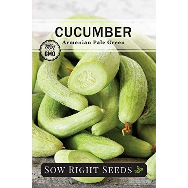 Sow Right Seeds Heirloom Seed 2 Sow Right Seeds - Cucumber Seed Collection for Planting - Armenian, Pickling, Lemon, Beit Alpha Variety Pack, Non-GMO Heirloom Seeds to Plant and Grow a Home Vegetable Garden, Great Gardening Gift
