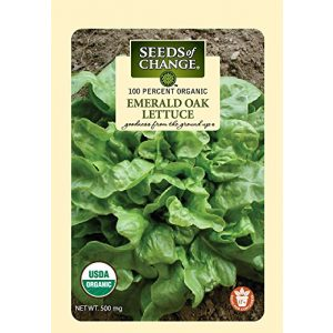 SEEDS OF CHANGE Organic Seed 1 Seeds of Change 04994 Organic Emerald Oak Lettuce