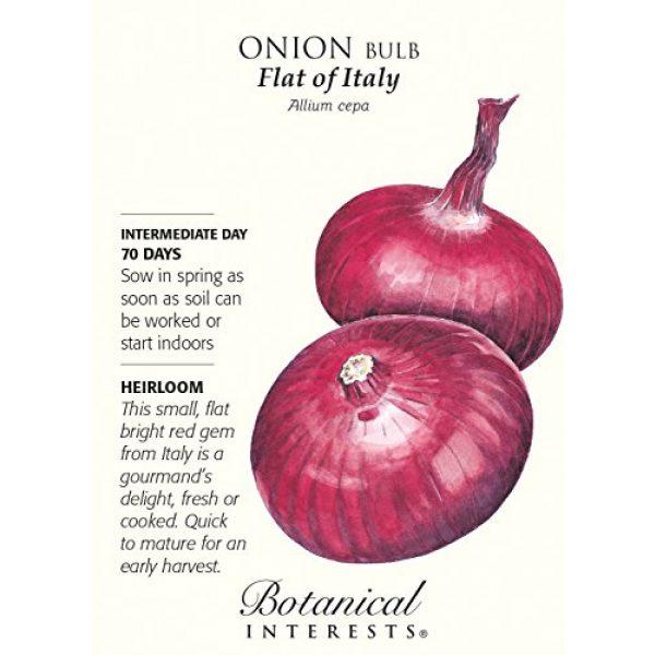 Botanical Interests Heirloom Seed 1 Flat of Italy Onion Seeds - 1 gram - Heirloom