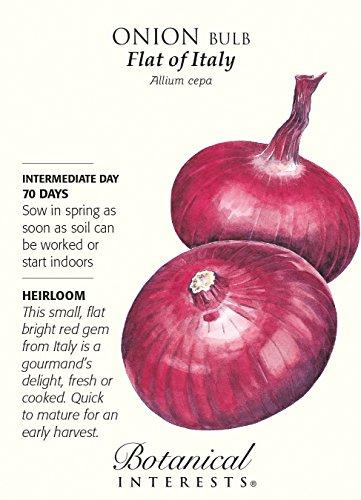 Botanical Interests  1 Flat of Italy Onion Seeds - 1 gram - Heirloom