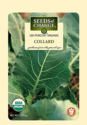 SEEDS OF CHANGE  1 Seeds of Change Certified Organic Collard