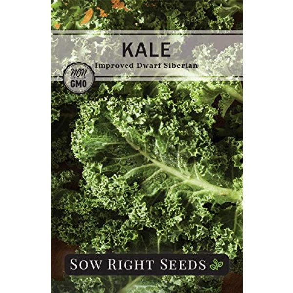 Sow Right Seeds Heirloom Seed 5 Sow Right Seeds - Kale Seed Collection for Planting - Non-GMO Heirloom Packet with Instructions to Plant and Grow a Home Vegetable Garden, Great Gardening Gift