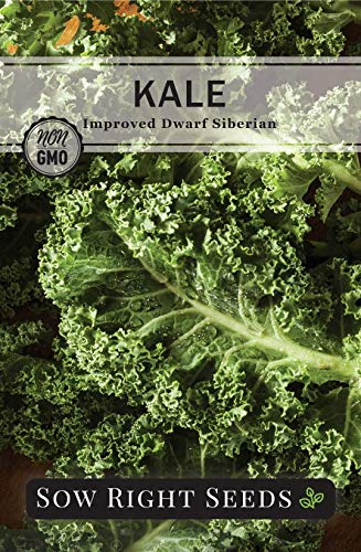 Sow Right Seeds  3 Sow Right Seeds - Kale Seed Collection for Planting - Non-GMO Heirloom Packet with Instructions to Plant and Grow a Home Vegetable Garden