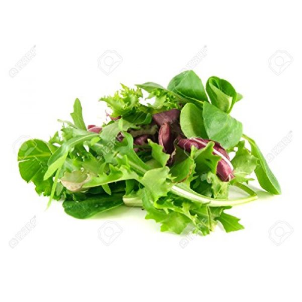 Marde Ross & Company Organic Seed 1 Organic Lettuce Seed Mix of 9 Greens - Mesclun Mix - Fall Crop and Cool Season Planting