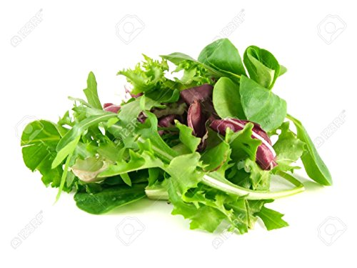 Marde Ross & Company  1 Organic Lettuce Seed Mix of 9 Greens - Mesclun Mix - Fall Crop and Cool Season Planting