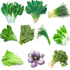 Kuting  1 Garden Vegetable Green Organic Chinese Seeds 10 Different Varieties Qty 5000+ for Planting Outside Door for Cooking Dish Soup Taste Good Delicious 100% Non-GMO by Kuting (10 Varieties-A)