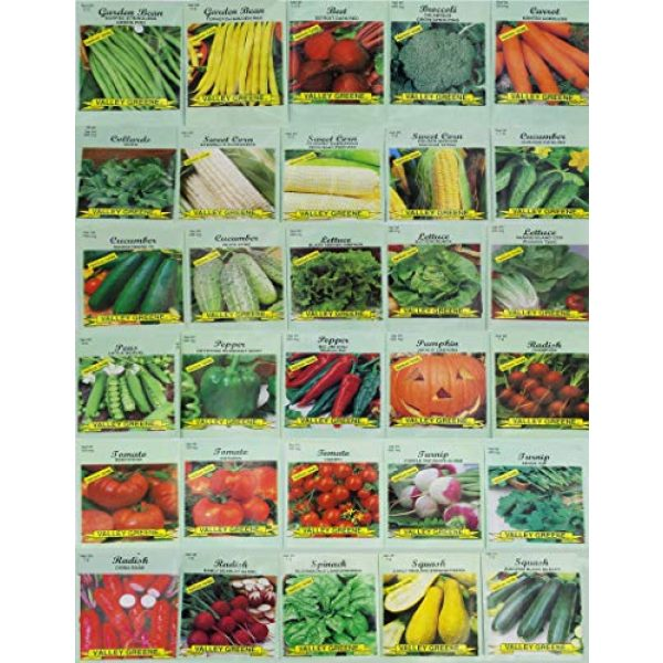 Valley Greene Heirloom Seed 1 30 Packs of Deluxe Valley Greene Heirloom Vegetable Garden Seeds Non-GMO(Guaranteed 30 Different Varieties as Listed)