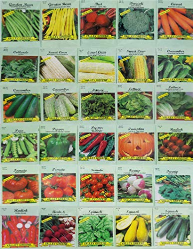 Valley Greene  1 30 Packs of Deluxe Valley Greene Heirloom Vegetable Garden Seeds Non-GMO(Guaranteed 30 Different Varieties as Listed)