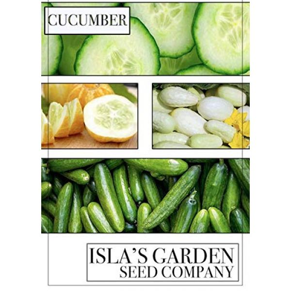 Isla's Garden Seeds Heirloom Seed 6 Lemon Cucumber Seeds,125+ Premium Heirloom Seeds,Fantastic addition to your home garden! Fresh & Delicious! Popular Choice! (Isla's Garden Seeds),Non Gmo,85-90% Germination Rates,Highest Quality Seeds