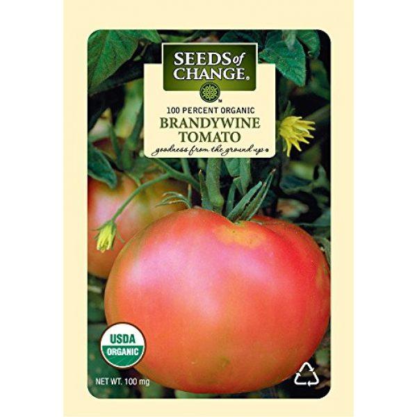SEEDS OF CHANGE Organic Seed 1 Seeds of Change S10766 Certified Organic Brandywine Heirloom Tomato
