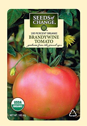 SEEDS OF CHANGE  1 Seeds of Change S10766 Certified Organic Brandywine Heirloom Tomato