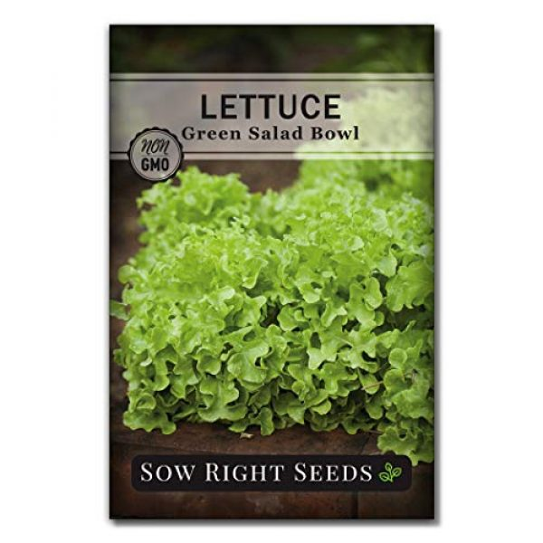 Sow Right Seeds Heirloom Seed 1 Sow Right Seeds - Green Salad Bowl Lettuce Seed for Planting - Non-GMO Heirloom Packet with Instructions to Plant a Home Vegetable Garden, Indoors or Outdoor; Great Gardening Gift (1)