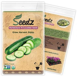 Seedz  1 Organic Cucumber Seeds