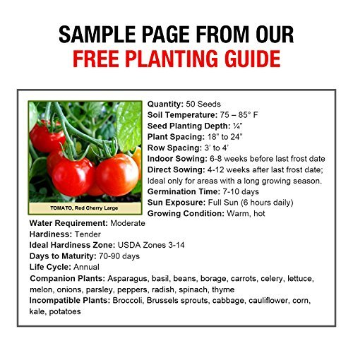 Grow For It  7 Heirloom Vegetable Seeds Non GMO Survival Seed Kit - Part of Our Legacy and Heritage - 50 Varieties 100% Naturally Grown- Best for Gardeners Who Raise Their Own Healthy Food