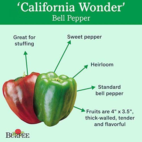 Burpee Heirloom Seed 2 Burpee California Wonder' Heirloom Sweet Red & Green Large Stuffing Bell Peppers, 300 Seeds