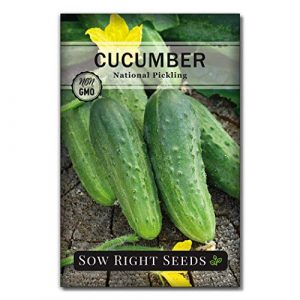 Sow Right Seeds  1 Sow Right Seeds - National Pickling Cucumber Seeds for Planting - Non-GMO Heirloom Seeds with Instructions to Plant and Grow a Home Vegetable Garden