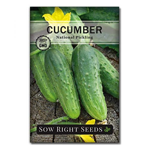 Sow Right Seeds Heirloom Seed 1 Sow Right Seeds - National Pickling Cucumber Seeds for Planting - Non-GMO Heirloom Seeds with Instructions to Plant and Grow a Home Vegetable Garden, Great Gardening Gift (1)
