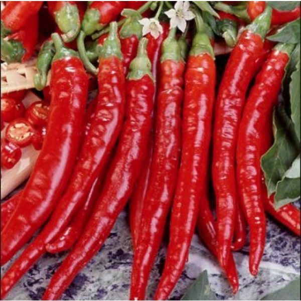 Isla's Garden Seeds Heirloom Seed 2 Cayenne Pepper Seeds, Long Red Thin Cayenne Peppers, 125+ Premium Heirloom Seeds, Fantastic Way to Spice up Your Home Garden!,(Isla's Garden Seeds) - Non GMO, 90% Germination, Highest Quality