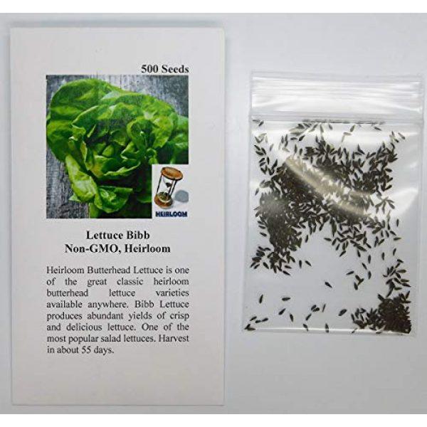 David's Garden Seeds Heirloom Seed 2 David's Garden Seeds Lettuce Butterhead Bibb SL0198 (Green) 500 Non-GMO, Heirloom Seeds