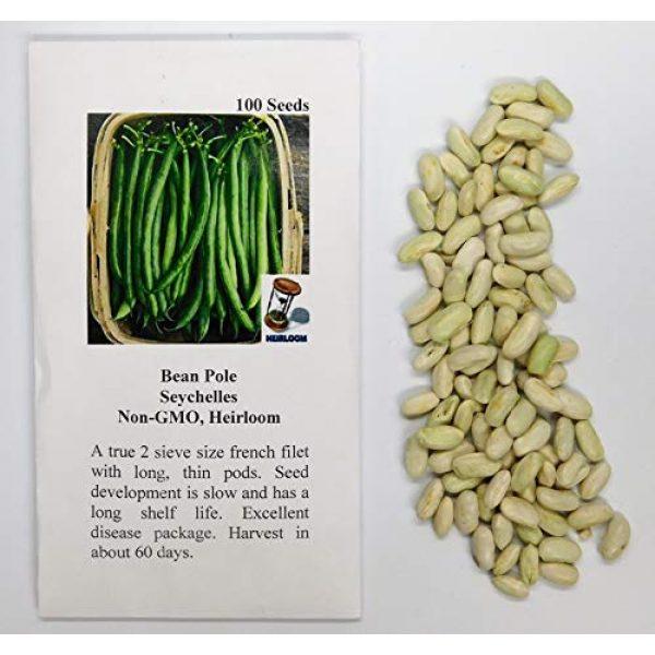 David's Garden Seeds Heirloom Seed 2 David's Garden Seeds Bean Pole Seychelles 4343 (Green) 100 Non-GMO, Heirloom Seeds