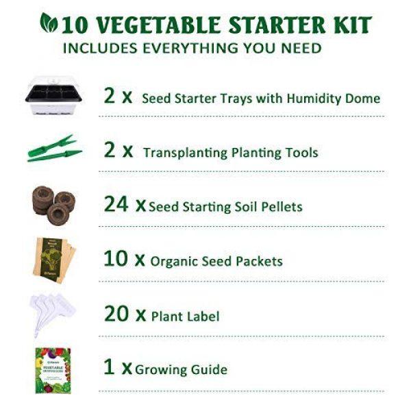 KORAM Organic Seed 3 KORAM Vegetable Garden Starter Kit - 10 Organic Salad Seeds Organic Growing Kit DIY Gardening Starter Set with Everything a Gardener Needs for Growing Tomatoes Broccoli Cucumber for Christmas Gift