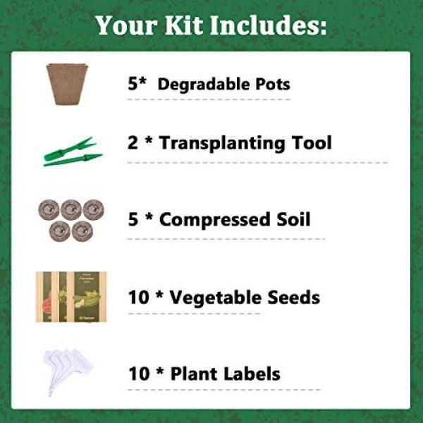 KORAM Organic Seed 2 Vegetable Seed Starter Kit, KORAM 10 Organic Garden Vegetable Seeds for Indoor Planting, Pots Kitchen Gardening Grow Kits Gift for Gardening Beginner