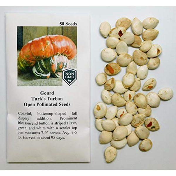 David's Garden Seeds Heirloom Seed 2 David's Garden Seeds Gourd Turk's Turban 4554 (Multi) 25 Non-GMO, Heirloom Seeds