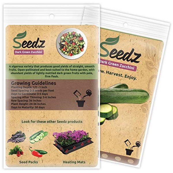 Seedz Organic Seed 3 Organic Zucchini Seeds, APPR. 60, Dark Green Zucchini Squash, Heirloom Vegetable Seeds, Certified Organic, Non GMO, Non Hybrid, USA