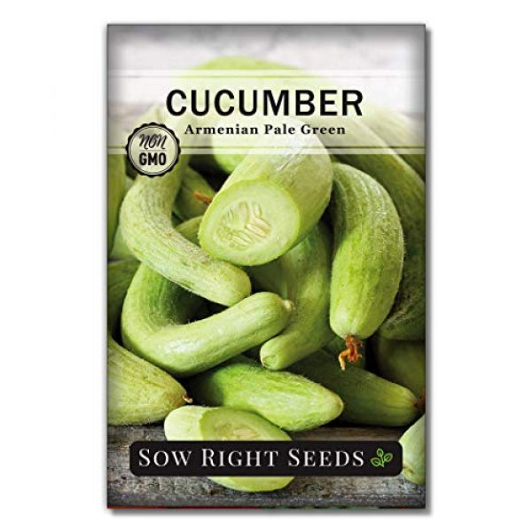 Sow Right Seeds Heirloom Seed 1 Sow Right Seeds - Armenian Pale Green Cucumber Seeds for Planting - Non-GMO Heirloom Seeds with Instructions to Plant and Grow a Home Vegetable Garden, Great Gardening Gift (1)